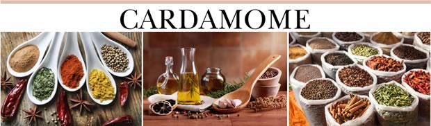 OecherDeal präsentiert Cardamome